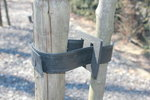 Aanschuiflus-boomband